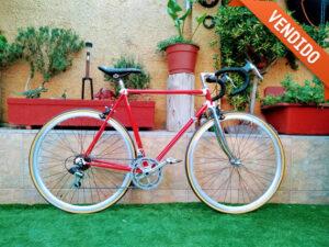 Bicicleta Tubos Reynolds