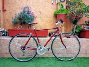 Ruta Vintage 14V